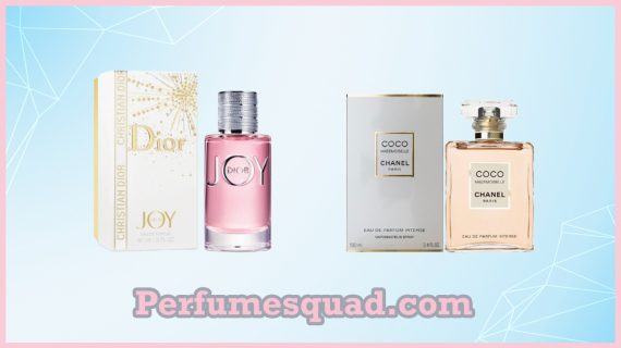 A guide to finding Perfumes you will Love